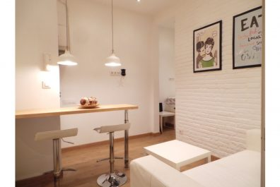 Ref 3081 – Apartment for rent in Virrei Amat, Barcelona. 22m2