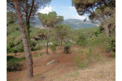 Ref 2436V – Terreno en venta en la zona de Maresme, Mataro. 1003 m2